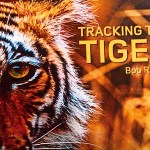 Tracking The Tiger, Bob Rupani, Rupani Media