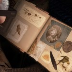 Up Pixar movie still Scrapbook books letters