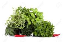 insalata di riso, erbe aromatiche,