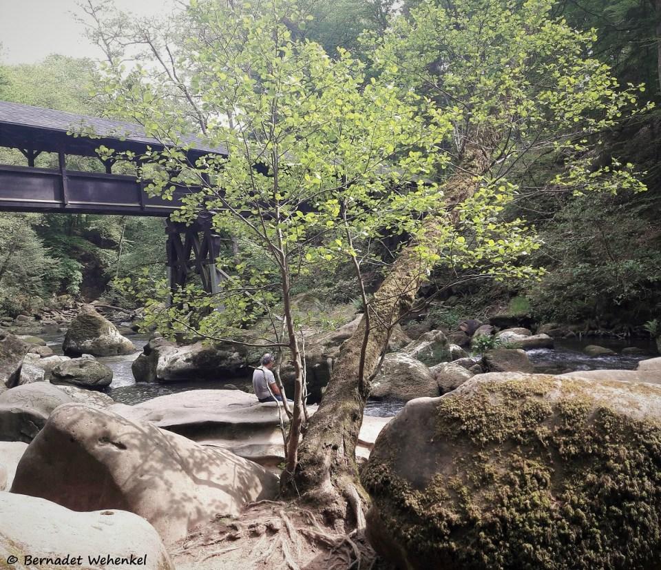 De houten brug over de rivier.