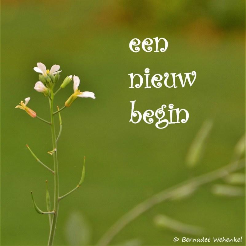 een nieuw begin