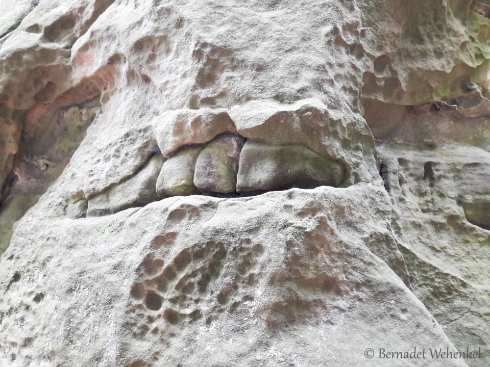 Tanden in de kloof in Mullerthal