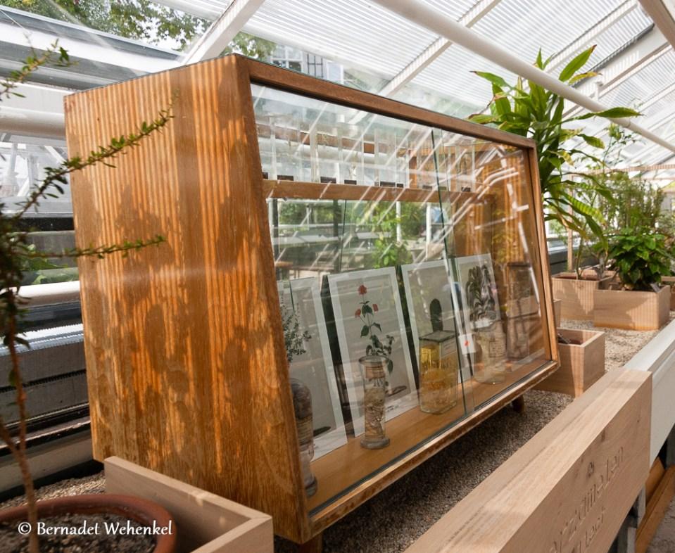 Het Klaslokaal in de Hortus in Amsterdam.