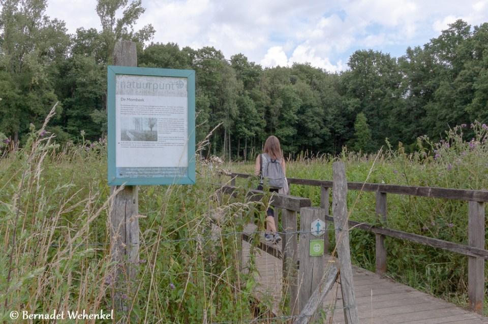 Een brugje in natuurgebied Nietelbroeken.