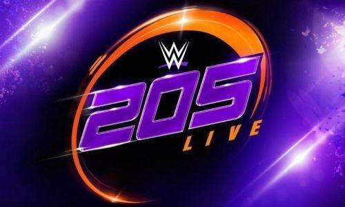 Resultados 205 Live