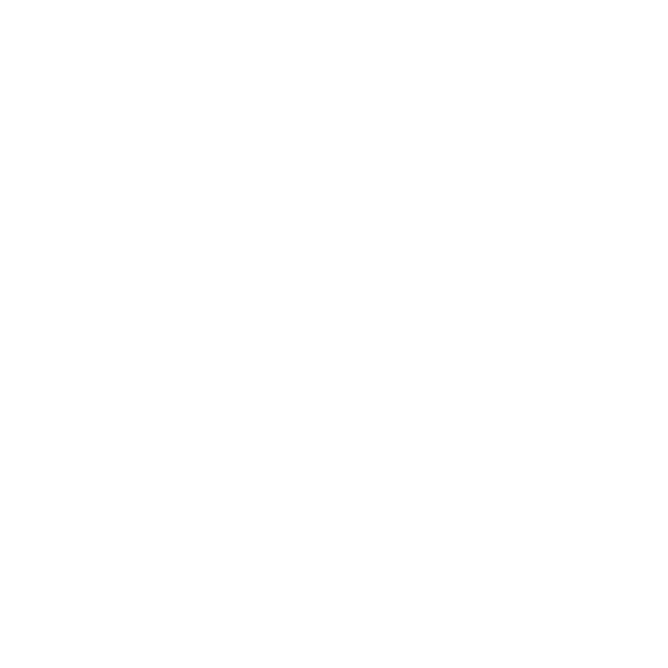 Verxel Arts VA 2d logo White