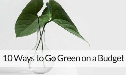 10 Basic Ways to Go Green on a Budget