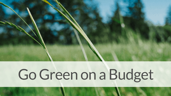 10 Easy Ways to Be Green & Frugal!