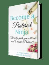 Pinterest Ninja