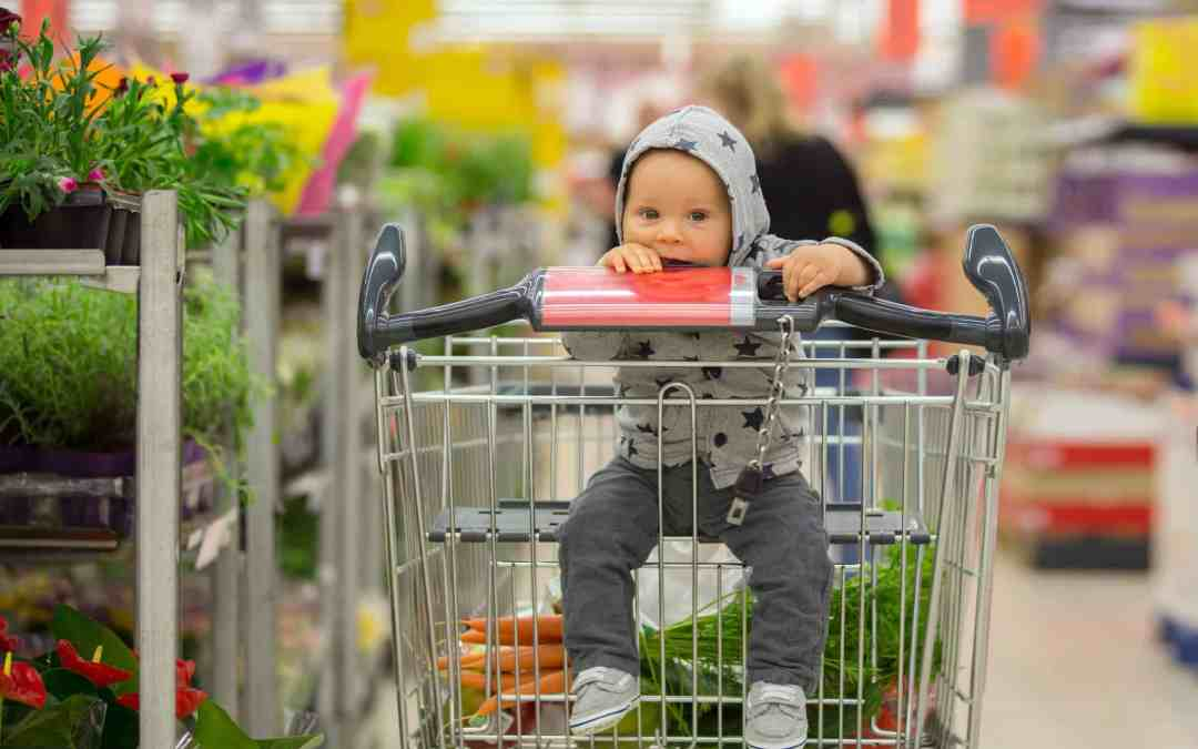 13 Tips for Grocery Shopping with Kids without any Meltdowns