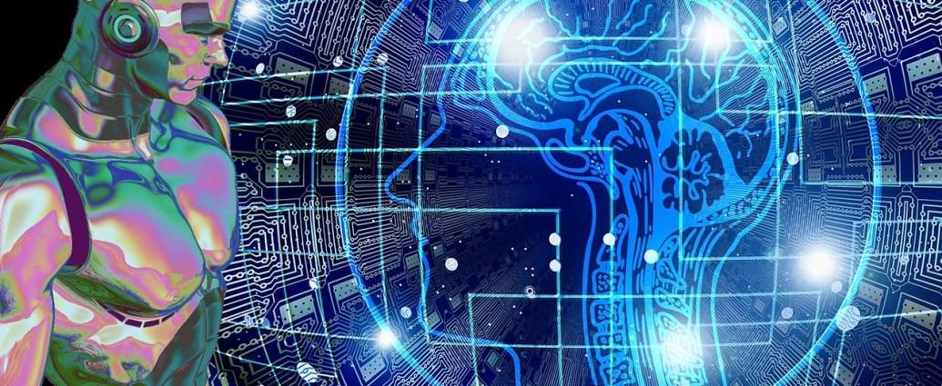 ordendor-vs-cerebro