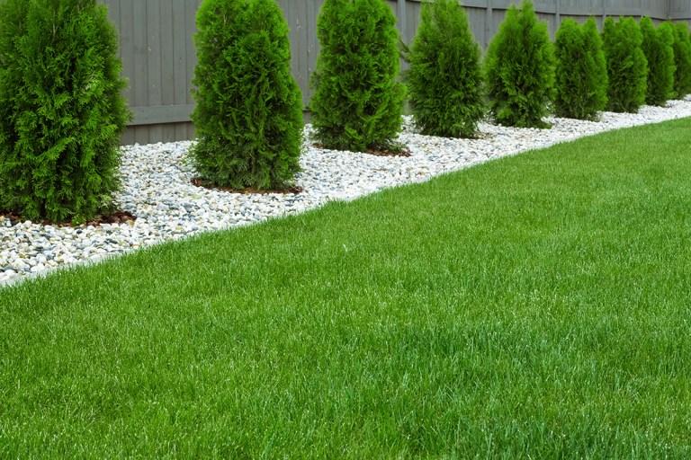 Direct Artificial Grass fake lawn