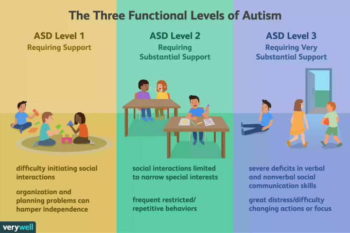 3 functional levels of autism. No bullying us.