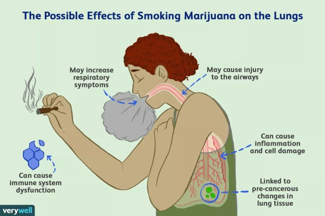 effects of marijuana on the lungs