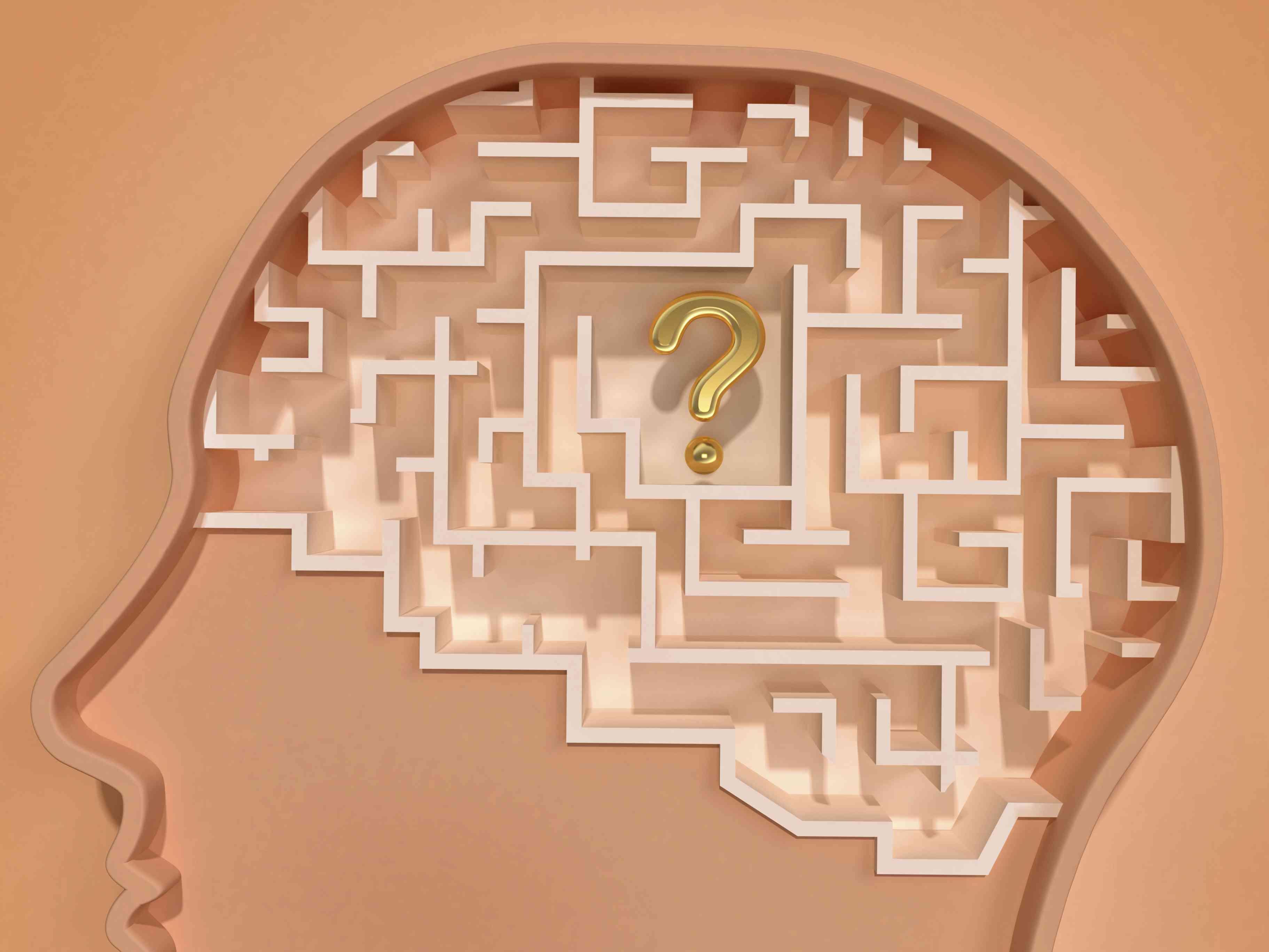 Sensory Short Term Working And Long Term Memory