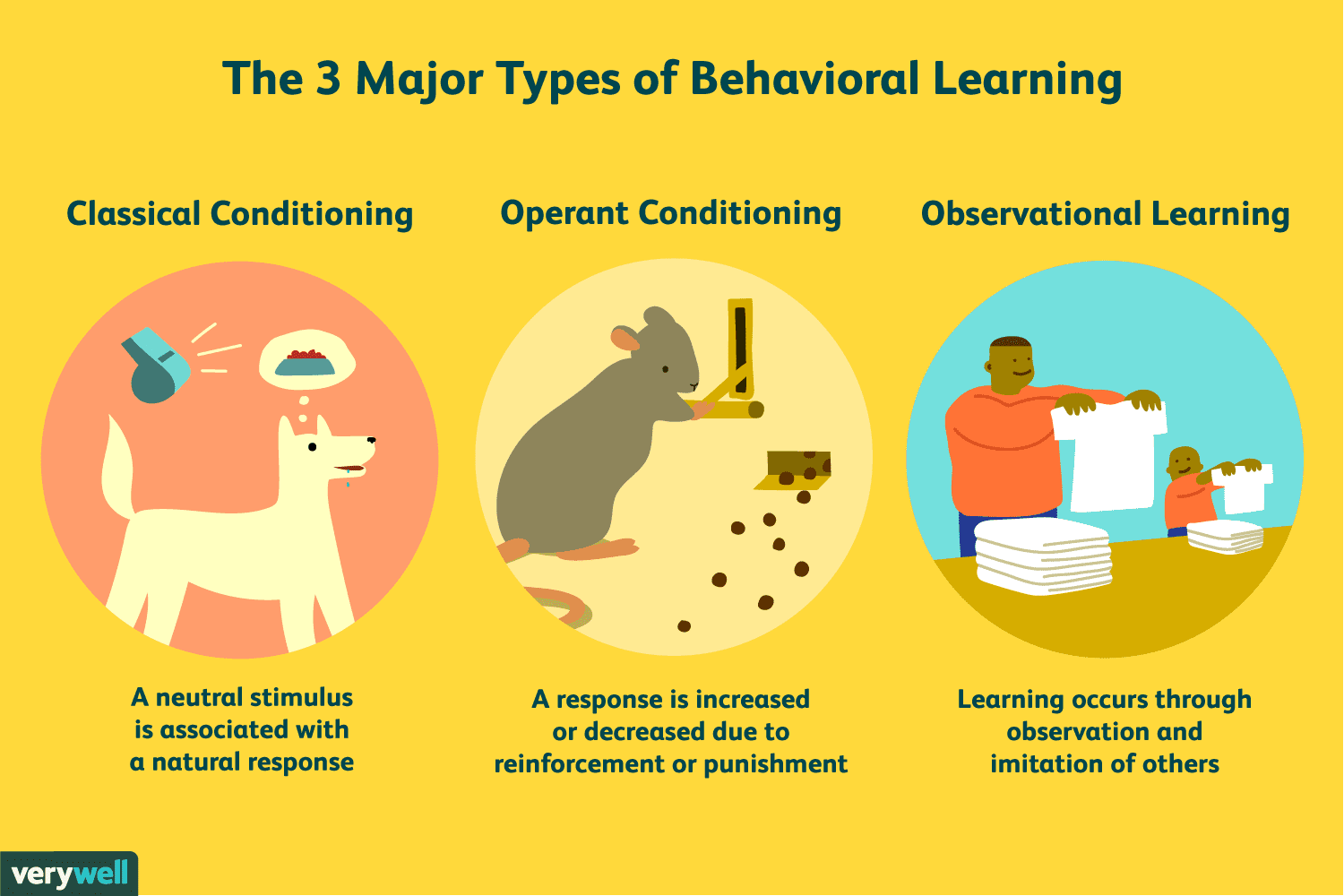 The Basics Of The Psychology Of Learning