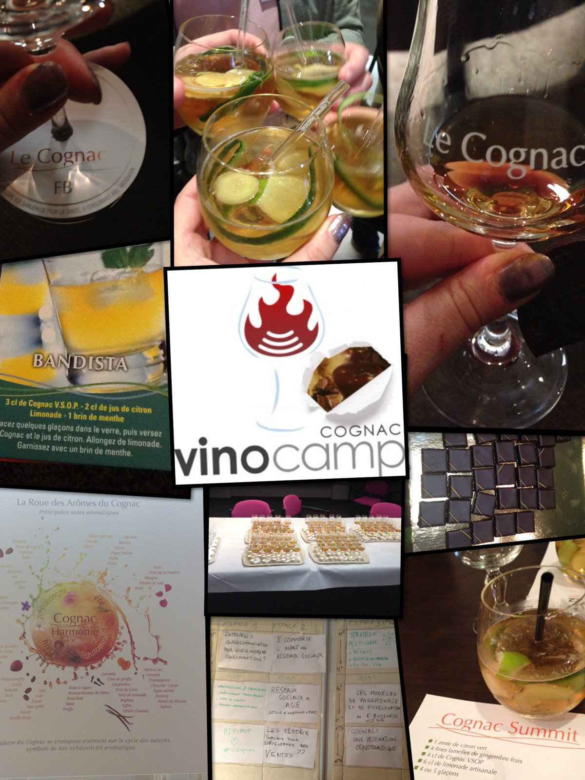 Le Vinocamp Cognac 2013 en images