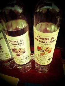 Liqueurs artisanales de Laurent Cazottes - Gaillac
