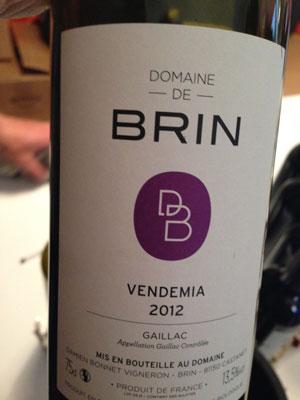 Vendemia---Domaine-de-Brin---Gaillac