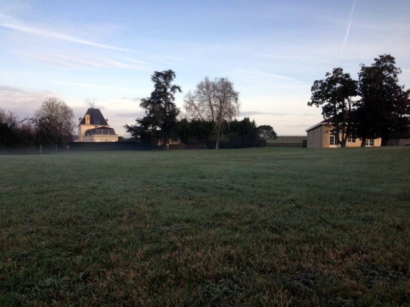 Balade matinale dans le parc du Château Larrivet Haut Brion - Pessac Léognan