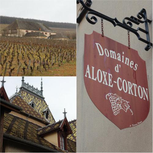 Dégustation Terroirs de Corton à Aloxe-Corton - Grands Jours de Bourgogne 2016