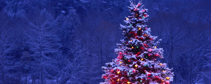 Vespera-Christmas