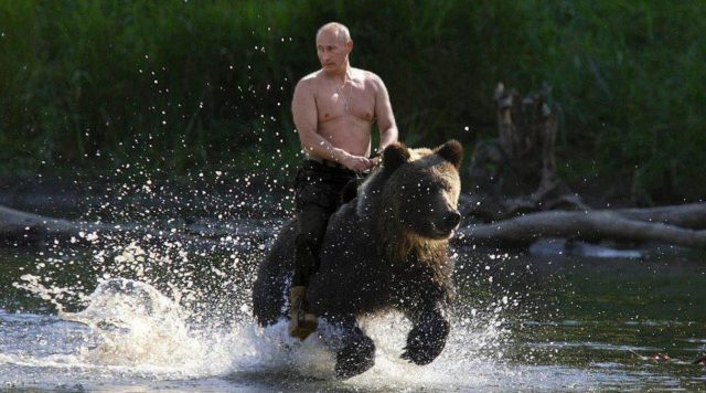 The Democrats take a dive on their pitiful attempt to blame the big bad Russia bear once again