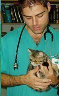 Veterinario Manel Risco