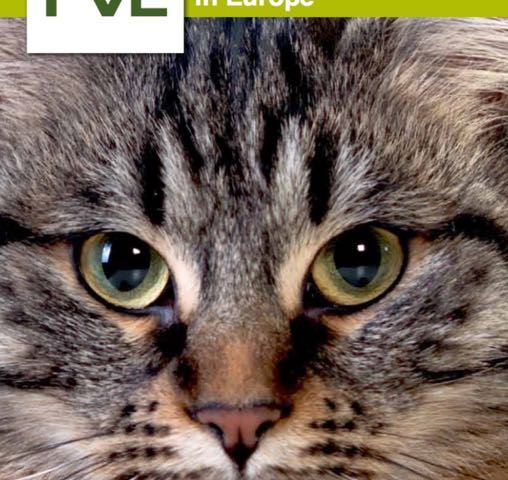 Challenges for the Veterinary Profession: A European Perspective