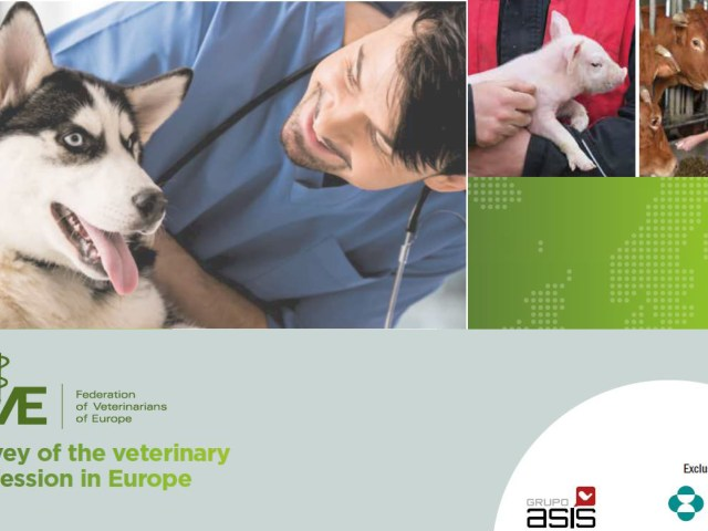 State of the European Veterinary Profession