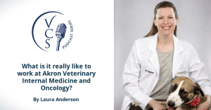 What is it really like to work at Akron Veterinary Internal Medicine and Oncology?