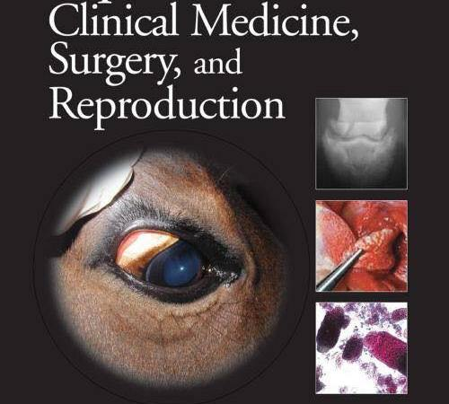 Equine Clinical Medicine Surgery And Reproduction PDF Free Download