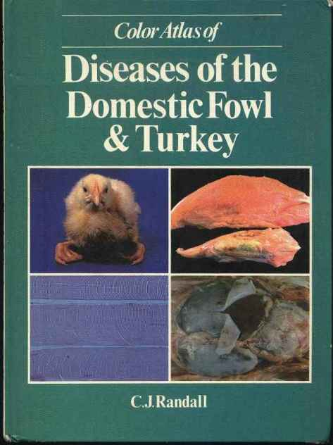 Color Atlas Of Diseases Of The Domestic Fowl And Turkey PDF