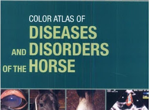 Color Atlas Of Diseases And Disorders Of The Horse PDF