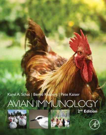 Avian Immunology 2nd Edition Free PDF Download