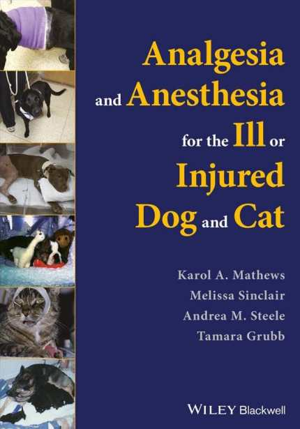 Analgesia And Anesthesia For The Ill Or Injured Dog And Cat PDF