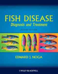 Fish Disease Diagnosis And Treatment