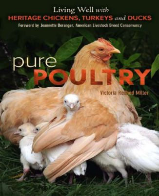 Pure Poultry Living Well With Heritage Chickens Turkeys And Ducks