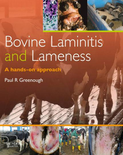 Bovine Laminitis And Lameness A Hands On Approach