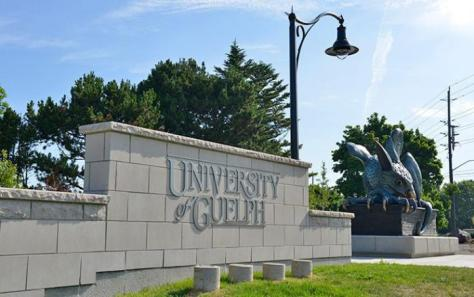 Top Veterinary Schools Near You University Of Guelph