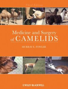 Medicine And Surgery Of Camelids 3rd Edition