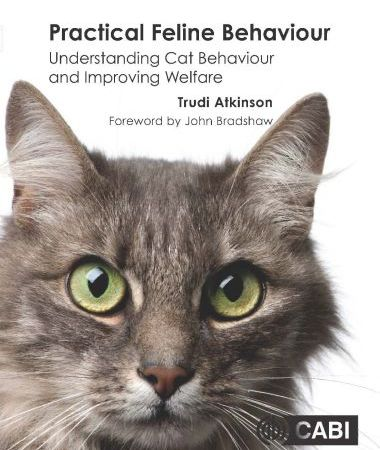 Practical Feline Behaviour Understanding Cat Behaviour And Improving Welfare