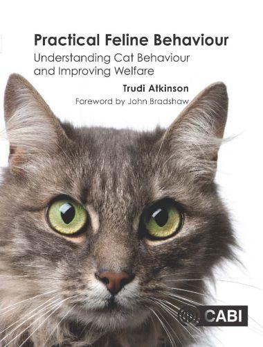 Practical Feline Behaviour Understanding Cat Behaviour And Improving Welfare