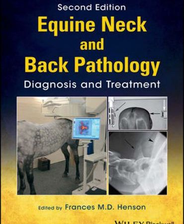 Equine Neck And Back Pathology Diagnosis And Treatment 2nd Edition