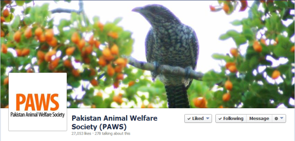 Pakistan Animal Welfare Society (PAWS)