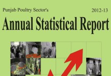 Punjab Poultry Sector's 2012-13 Annual Statistical Report