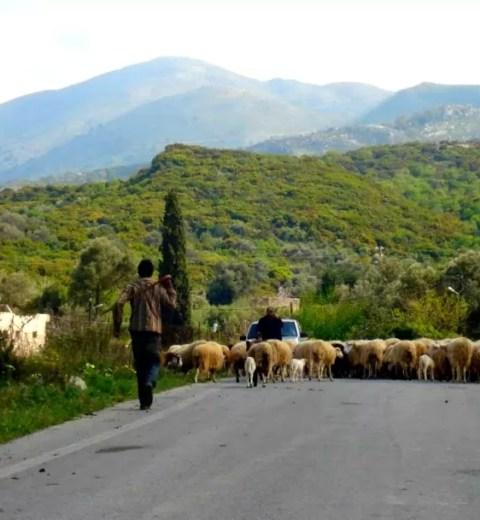 Chalkidiki, het onbekende Griekse paradijs