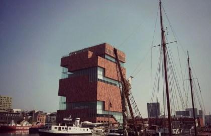 Antwerpen8