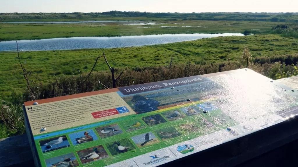 Vogels spotten op Texel renvogelveld