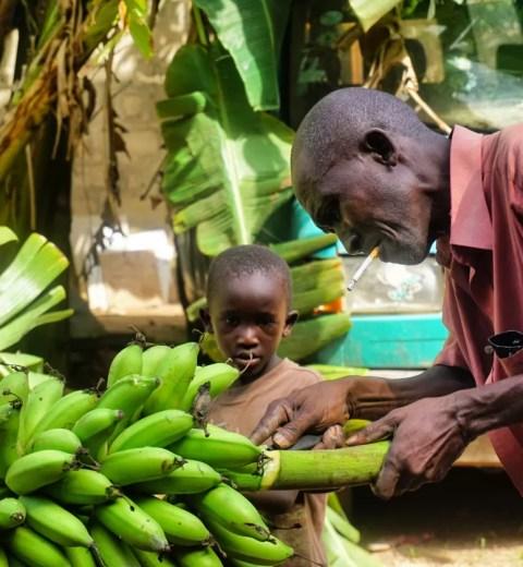 5 x toffe eet- en drinkadresjes in het Afrikaanse Gambia